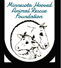 Minnesota Hooved Animal Rescue Foundation